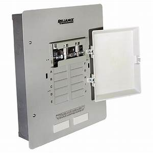 Reliance 30 Amp Manual Transfer Switch