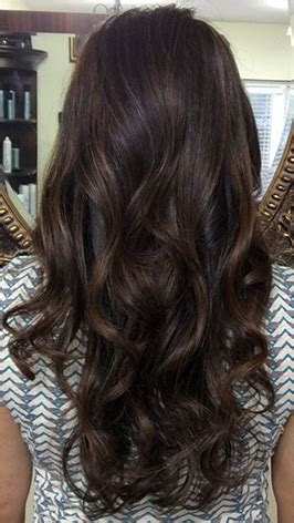 Espresso Brown Hair Color by Winter Fall 2015 Hair Color Trends Guide Simply