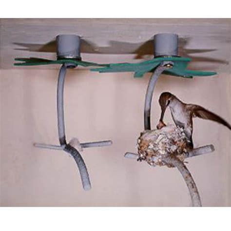 seed starter duncraft com hummingbird house