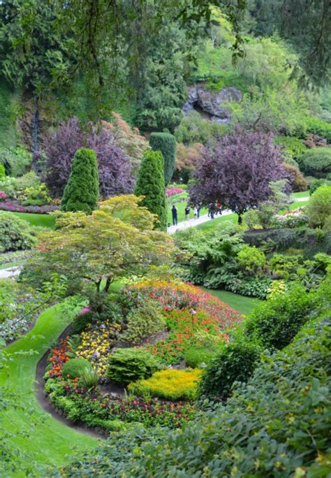 a visit to the beautiful butchart gardens after orange