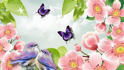 Spring Nature Wallpapers Widescreen Resolution