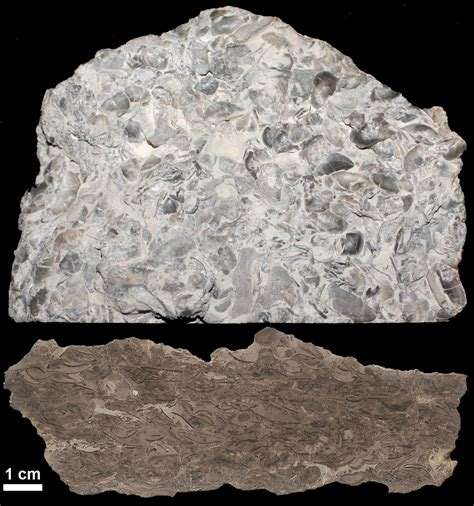 3 minerals an introduction to geology