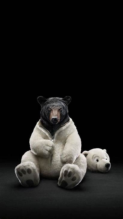 Bear Polar Android Costume Wallpapers Teddy Inside