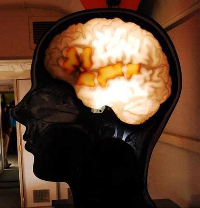 sugar  blood  shrink  brain brain health