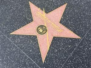Donald Trump's Walk of Fame Star Vandalized | Breitbart