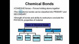 Structure Of Dental Materials - Bonding
