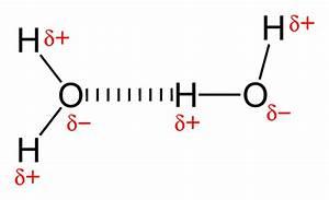 Intermolecular forces- describing the three types of ...