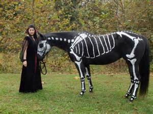 Skeleton Painted Horse