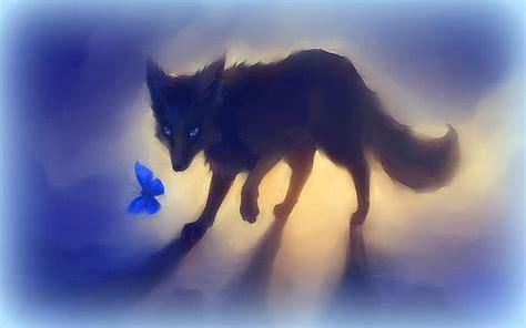 Black Fox With Butterfly Hd Desktop Wallpaper