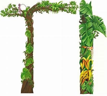 Jungle Clipart Border Cliparts Clip Safari Animal