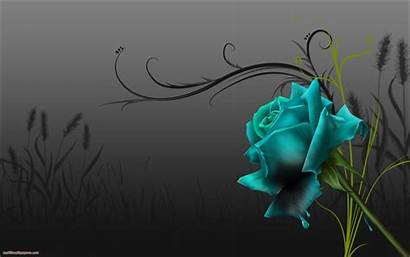 Rose Background Roses Wallpapers Abstract Aquamarin Desktop