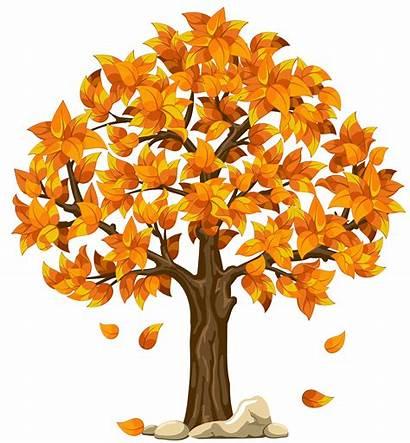Fall Tree Clipart Transparent Orange Autumn Yellow