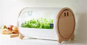 Mini Potager D Intérieur : un petit potager d 39 int rieur pour cultiver ses fruits et ~ Dailycaller-alerts.com Idées de Décoration