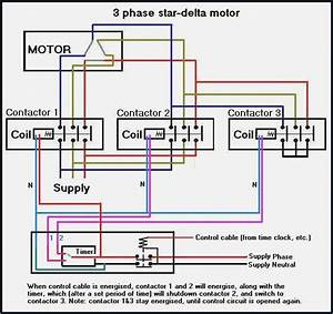 Three Phase Star Delta Wiring Diagram  U2013 Vivresaville Com