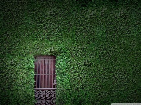 green building wallpaper gallery