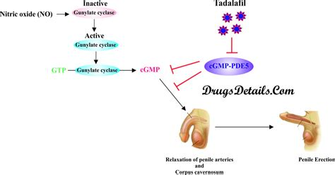 tadalafil drug details