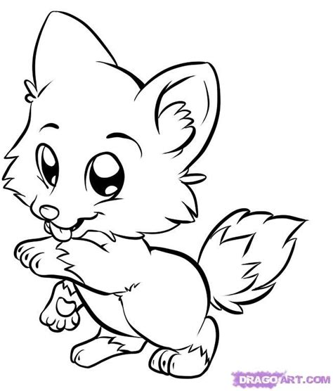 wolf coloring pages  kids draw baby wolf cute animals
