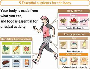 Nutritional Balance Essentials For Athletes And Active