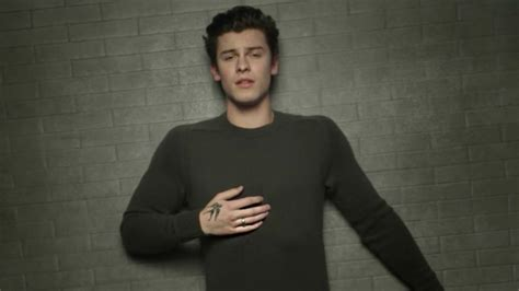 Shawn Mendes Drops Beautiful And Emotional Video For 'in