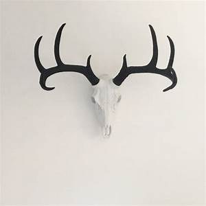Best mounted deer heads ideas only on