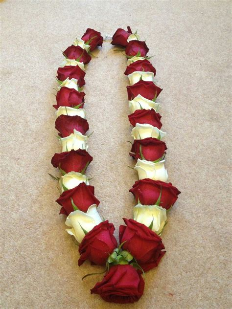 fresh red  white rose  simple   simple jas