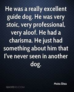 Guide Dog Insperational Quotes. QuotesGram