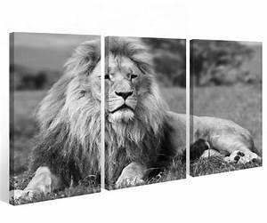 Tierbilder Schwarz Weiß : leinwand 3 tlg l we schwarz wei tier afrika savanna bilder wandbild 9a512 holz fertig gerahmt ~ Markanthonyermac.com Haus und Dekorationen