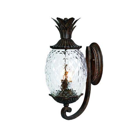 acclaim lighting lanai collection 2 light black coral