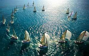 Sailing Race Wallpaper