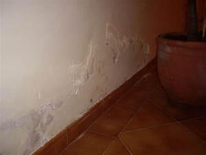 Feuchtigkeit In Der Wand Was Tun : salpeter in der wand bild salpeter an der wand in einem doppelzimmer deluxe salpeter an der ~ Sanjose-hotels-ca.com Haus und Dekorationen