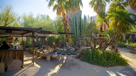 moorten botanical garden and cactarium in palm springs
