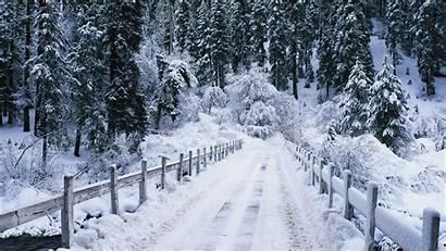 Snow Winter Bridge Nature Landscape Desktop Backgrounds
