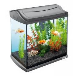 design aquarien awesome aquariums aquarium addicts anonymous