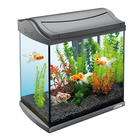 fish aquariums awesome aquariums aquarium addicts anonymous
