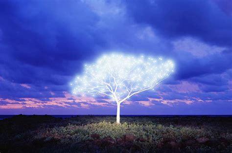 glowing topiary photography tree  life  island