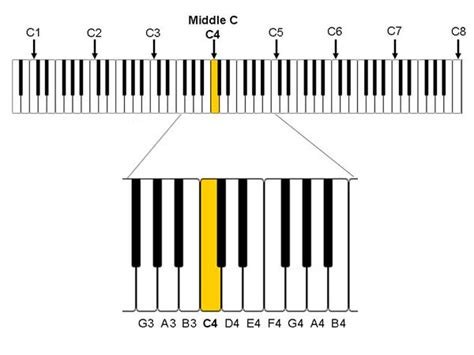 five octave vocal range comparing vocal ranges how high and low can you go