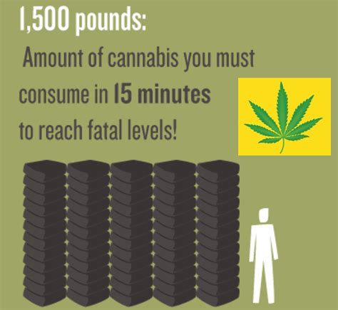 There are different ways you can use. This Is Why You Could Never Overdose or Die From Marijuana