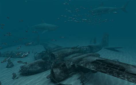 Shark Animated Wallpaper - sharks 2 0 3d screensaver and animated wallpaper apamwea