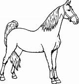 Horse Coloring Pages Miniature Horseman Spirit Headless Printable Sheets Baby Colouring Getcolorings Getdrawings Drawing Clipartmag Clipart sketch template