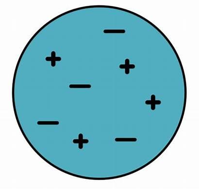 Electricity Object Neutral Siyavula Negative Positive Grade