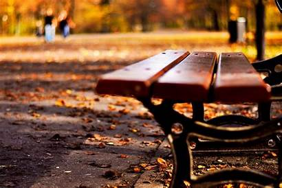 Wallpapers Screen Background Bench Autumn Leaf Nature