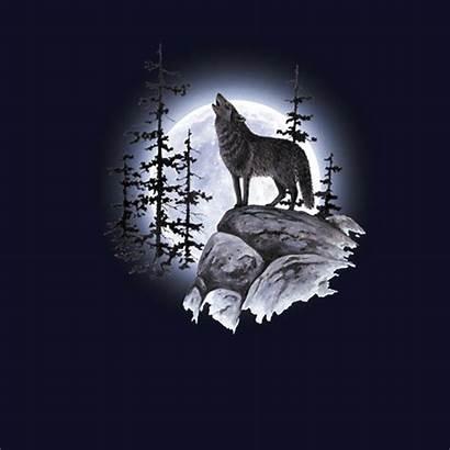 Lobo Aullando Moon Wolf Luna Howling Xs
