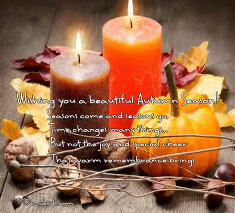 autumn gift  flowers  candles  magic  autumn