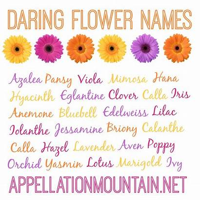 Names Flower Unique Daring Floral Azalea Edelweiss