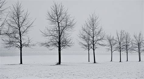 winter cover free winter facebook covers for timeline blog art designs