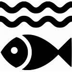 Fish Icon Water Fishing Under Svg Onlinewebfonts