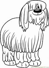 Sheepdog Niblet Coloringpages101 sketch template