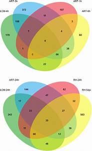 Multiple Comparisons  Venn Diagrams  Of Nf Up