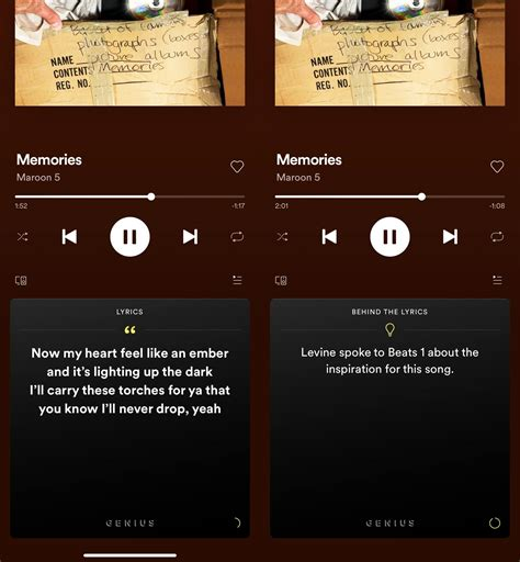 How to View Timed Lyrics in Apple Music, Spotify, YT Music ...