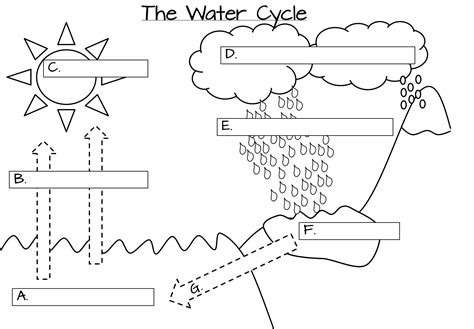 one s adventures water cycle foldable